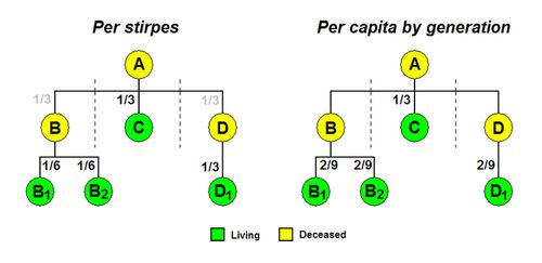 Per stirpes - Wikipedia, the free encyclopedia