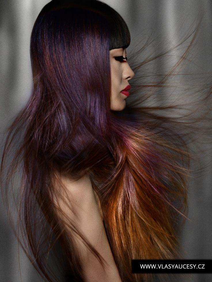Podívejte se na nejlepší dlouhé účesy z BHA. Tyto tipy na účesy pro dlouhé vlasy 2016 vám pomohu vybrat si nový dlouhý střih, styling nebo barvu.
