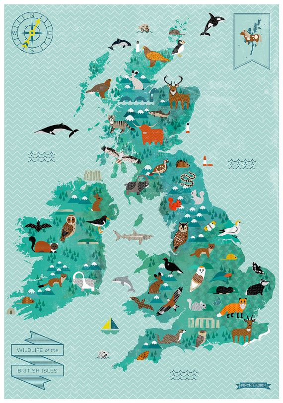 Wildlife of the British Isles Map by finchandrobin