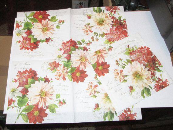 1 new German rust peach dark red flowers French by TheWisdomTree