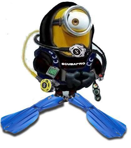 www.clubsubamicidelmare.it - la subacquea per tutti