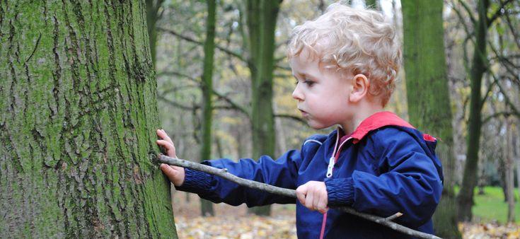 In het bos wil Bram een afgevallen tak aan een boom 'teruggeven'. Dat doet hij…