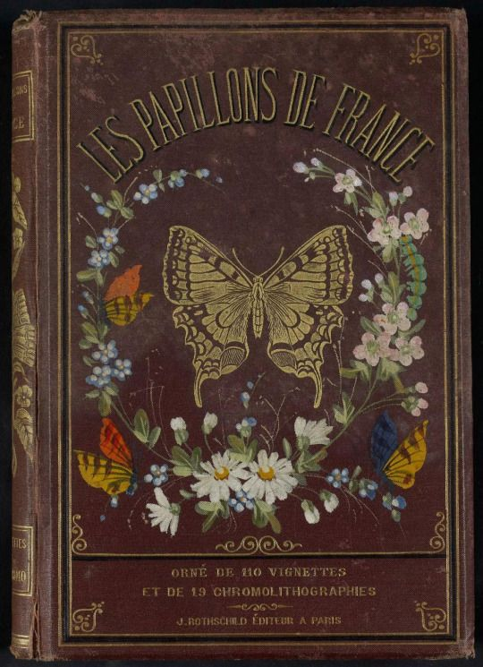 Decorative front cover of 'Les Papillons de France,'   Published 1880. Editor - J. Rothschild.  Institut National de la Recherche Agronomique (INRA)