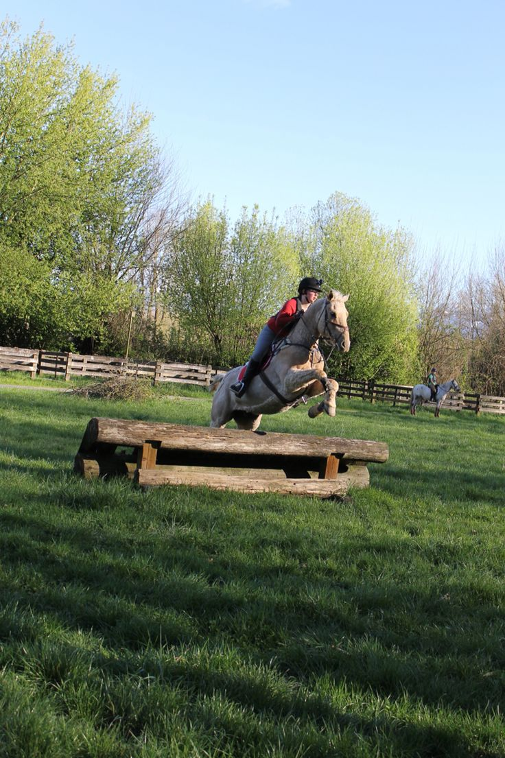 Mr. Spotty thinks that this jump is not worth his time