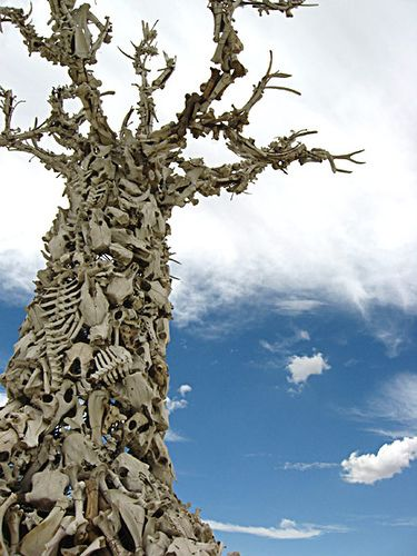 A Bone Tree from a Burning Man festival. -one of may favorite art installations of all time