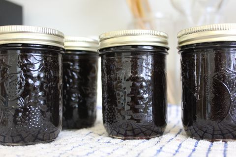 Canning serviceberry syrup