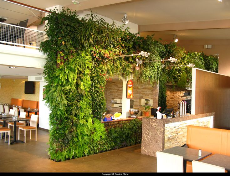 Vertical garden in restaurant garden design shops cafes for Sustainable interior design products