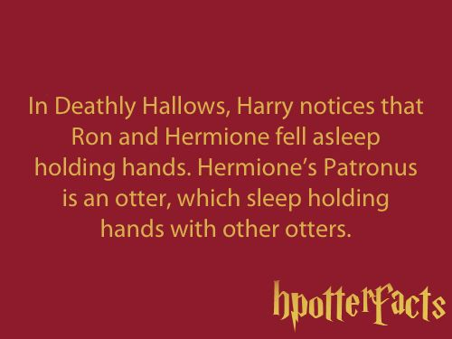 In Deathly Hallows, Harry notices that Ron and Hermione fell asleep holding hands. Hermione's Patronus is an otter, which sleep holding hands with other otters.