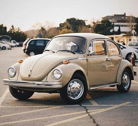 vw super beetle ideas  pinterest beetle auto bettle net  volkswagen beetle vintage
