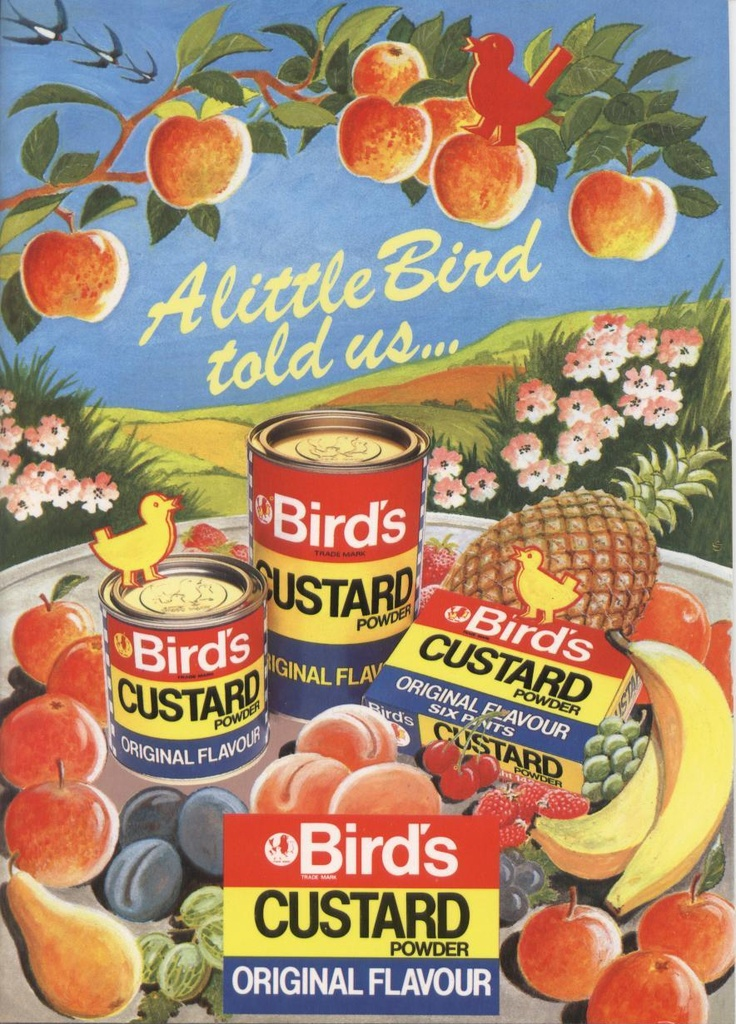 A little bird told us... Birds Custard