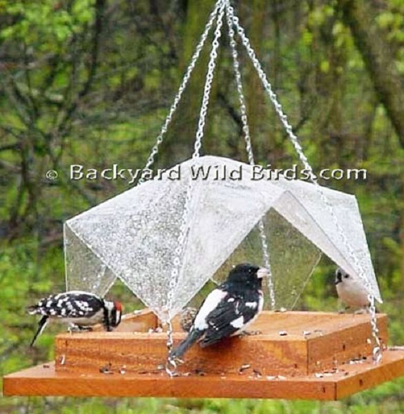 17 Best Images About Platform Bird Feeders Covered On