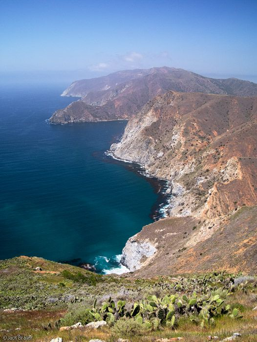 17 Best images about Catalina Island on Pinterest | Santa ...
