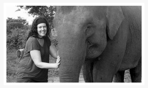 never forgotten | The first time Michelle came face to face with an Elephant, that was it, the connection was made and with it, a conviction to make a difference.