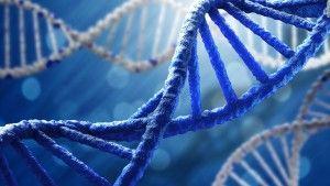 Molekula DNA sa môže zregenerovať pomocou ľudských pocitov