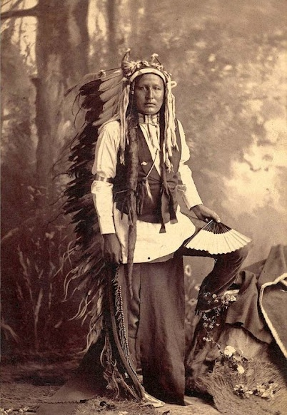 O'kohomoxhaahketa alias Little Wolf, né vers 1820, mort vers 1904, était un chef cheyenne du nord des États-Unis. Il était un grand tacticien militaire et est connu pour avoir mené une évasion spectaculaire de sa prison dans l'Oklahoma pour retourner dans sa patrie Cheyenne du Nord en 1878.