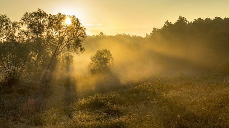 35PHOTO - Mariuszbrcz - утренний свет