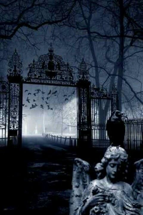 Gothic - LOVE these old fences..