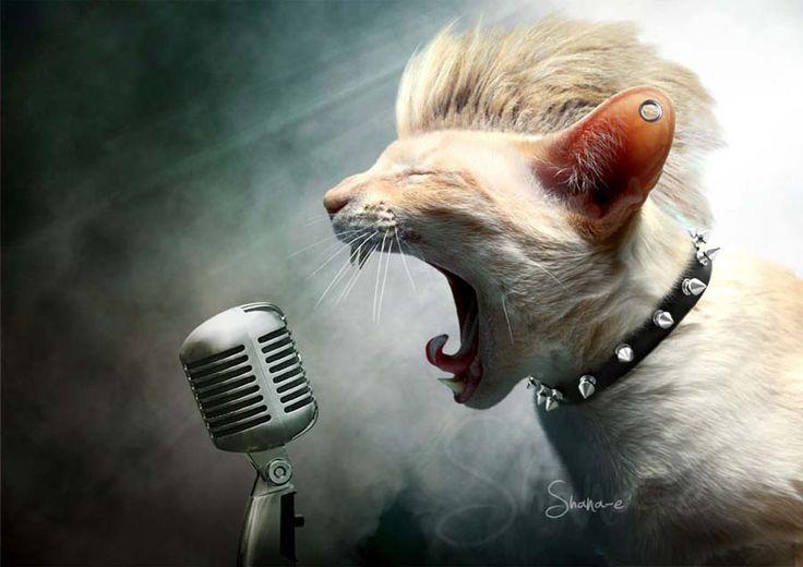 Chunk - Photoshop - 2014 - Estelle FAY aka Shanae ©