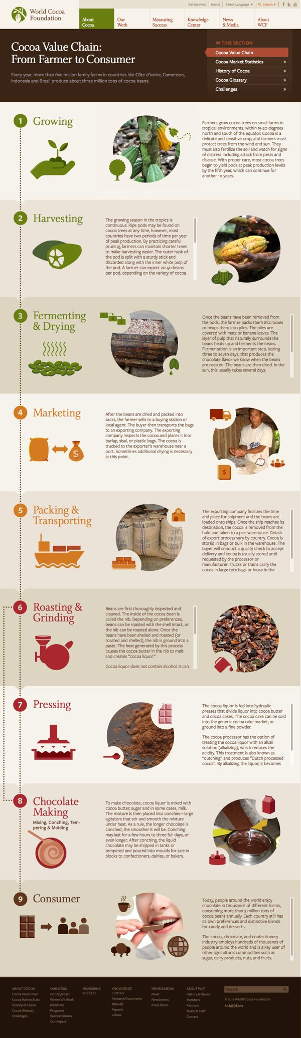 World Cocoa Foundation Website Design by MSDS Branding & Design , via Behance
