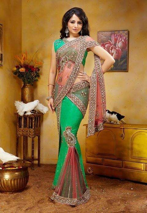 Image from https://www.expatads.com/adpics1/2013/8/online-saree-shopping-online-shopping-wedding-sarees-and-apparel-shopping-saree521f03a39961fb974620.jpg.