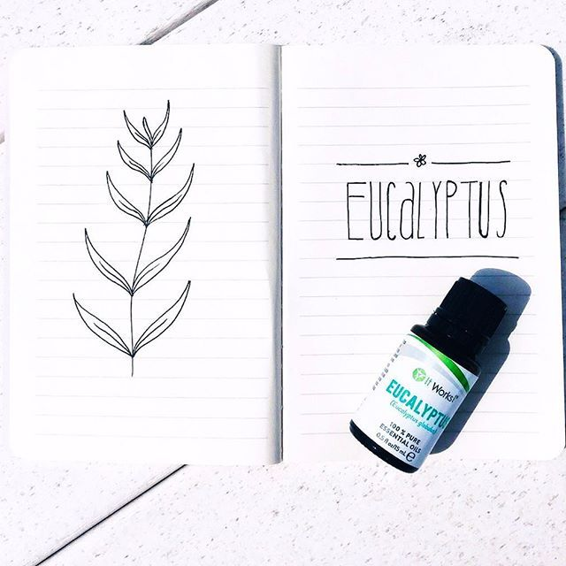 A little bit spicy, a little bit soothing, and a whole lot of invigorating! Eucalyptus is all of that and so much more! Which It Works! Essential Oil is your fave? #WeMakeOilsCool