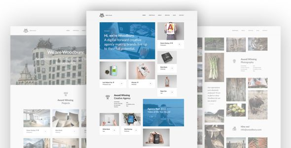 Woodbury - Multi-purpose Bootstrap HTML5 Portfolio - Portfolio Creative