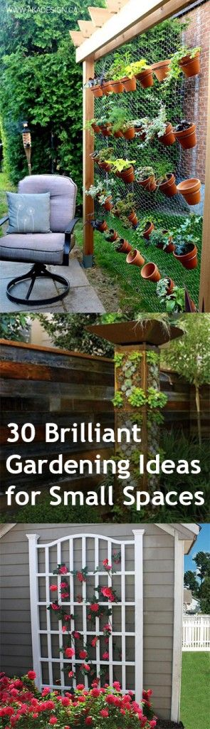 Small Space Garden Ideas best 25 small gardens ideas on pinterest 30 Brilliant Gardening Ideas For Small Spaces