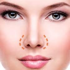 Image result for nostril reduction