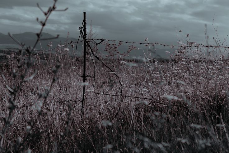 Фотография ... автор tiko gogolauri на 500px