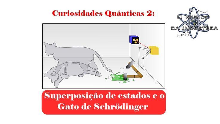 Curiosidades Quânticas 2 - Superposição de estados e o Gato de Schrödinger