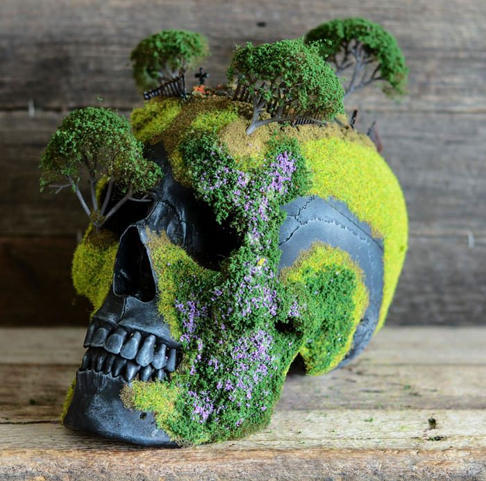 Mini bonsai gardens on top of skulls are gorgeously wicked