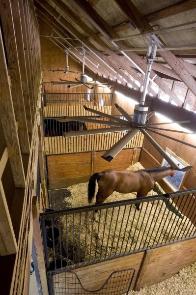 I love that there's fans on ceiling and the windows for horses to stick their heads out of. The only thing I don't like is the doors down in the left corner. These would be just some stalls. Maybe for the lesson barn??