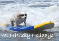 Port Stephens Holiday Accommodation  Events and Special HOT DEALS