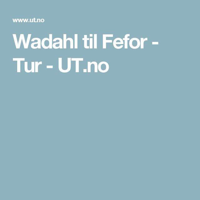 Wadahl til Fefor - Tur - UT.no