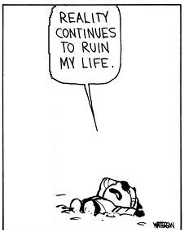 Calvin and Hobbes on Twitter