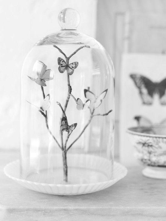 Glazen stolp met vlinders