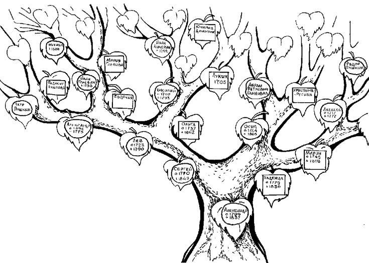 25    Arbol genealogico para colorear