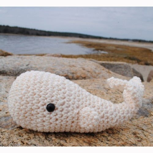 OH MY GOSH! An amigurumi whale! I must make him! In purple! In blue! In red!