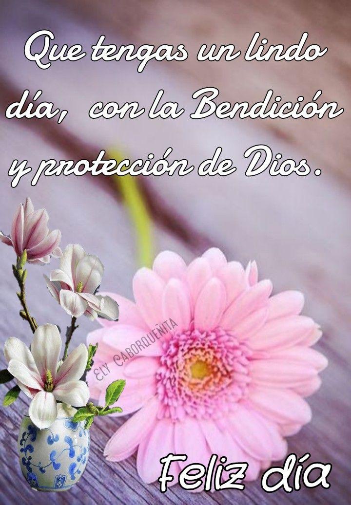 Pin de Ana Clara en Mensajes de buenas noches | Saludos de buenos dias, Saludos d buenos dias, Frases bonitas de buenos días