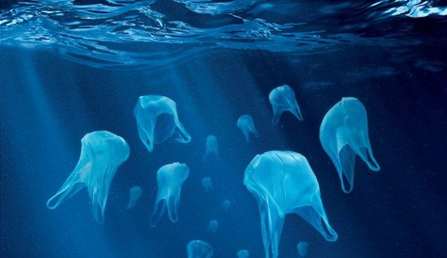 Nach Ruanda und Eritrea verbietet nun auch Kenia den Gebrauch von Plastiktüten. Damit sind die Länder Vorreiter im Umweltschutz und sollten Beispiel für Europa sein, wo ein vollständiges Plastiktüt…