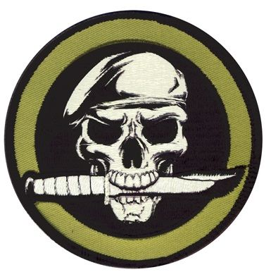 Special Forces Skull Novelty Patch