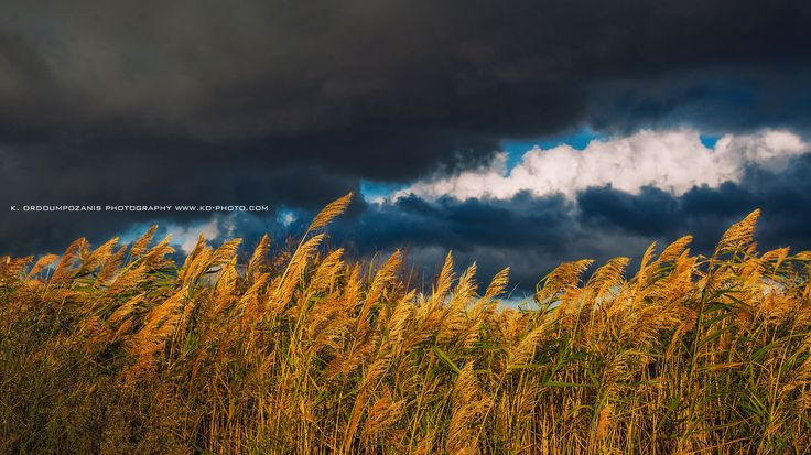 Clouds and Cobs Landscape photography
