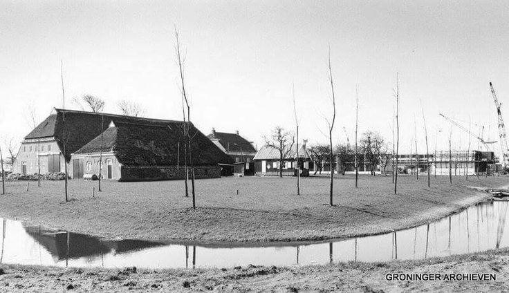 Leeuwenborg in aanbouw, 1972. Op de voorgrond een boerderij aan de Noorddijkerweg