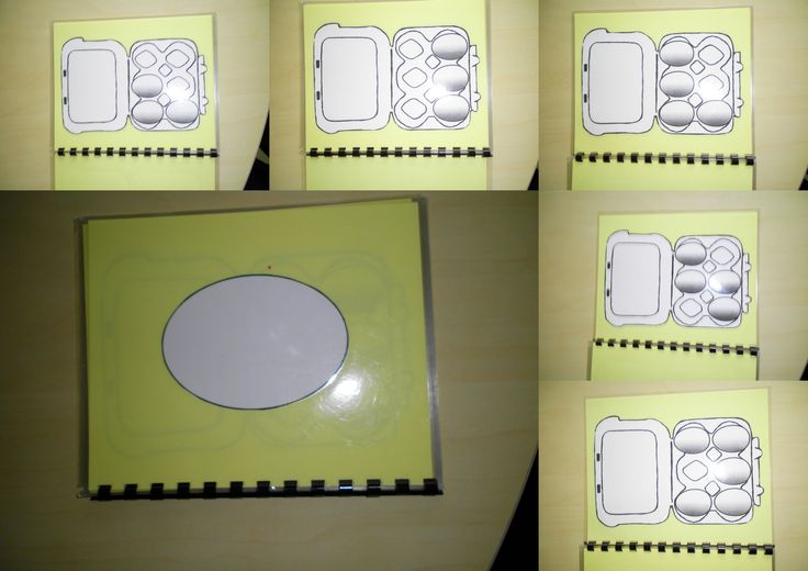 Boekje met opdrachten voor eieren in een eierdoos te leggen