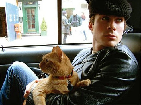 Ian Somerhalder with one of his three kitties