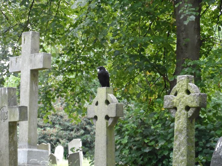 Brompton Cemetery, London, 2012. Picture taken by Jammekke.