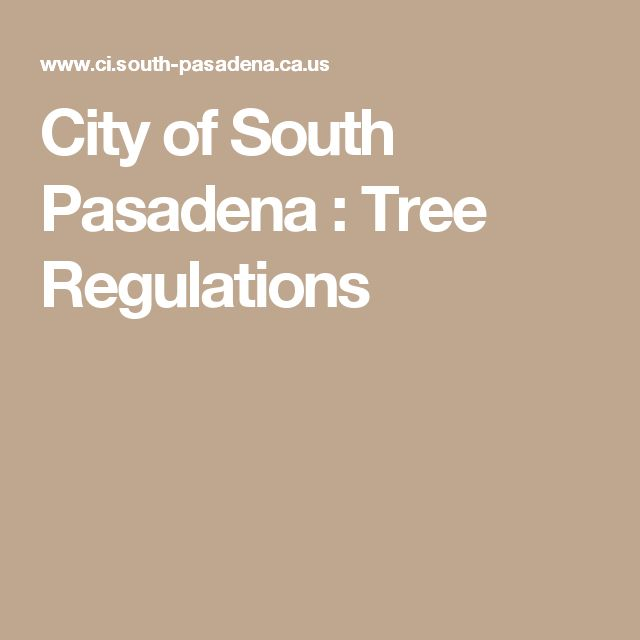 City of South Pasadena : Tree Regulations