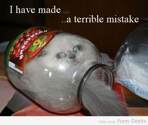 I Have Made ….A Terible Mistake