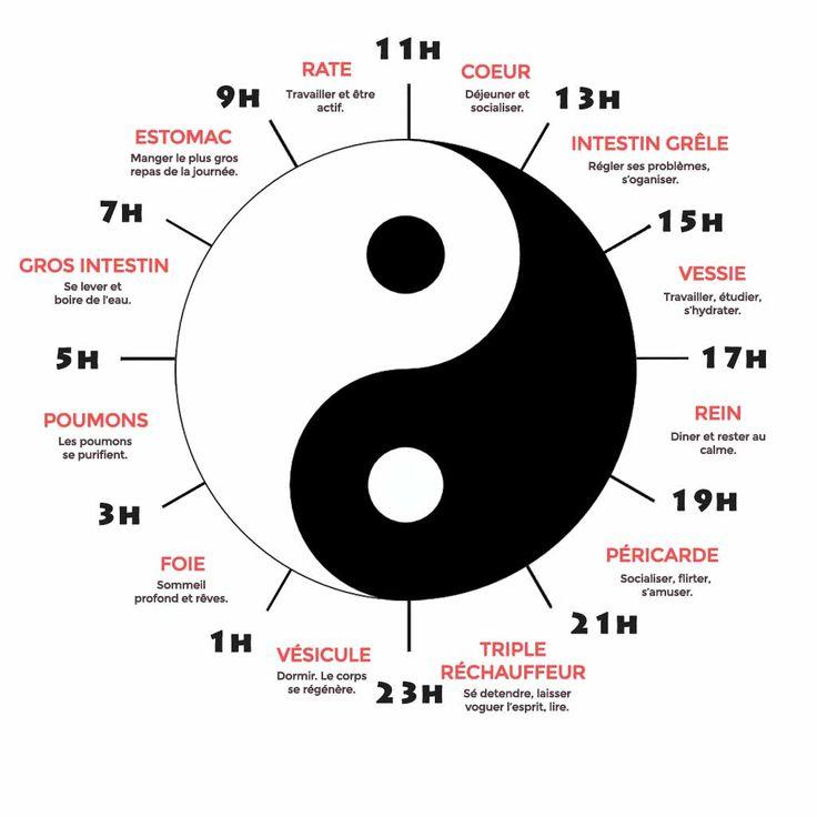 Du mal à se réveiller, s'endormir ? réveil nocturne ? L'horloge biologique selon la médecine chinoise peut aider à rétablir votre l'horloge interne de votre corps