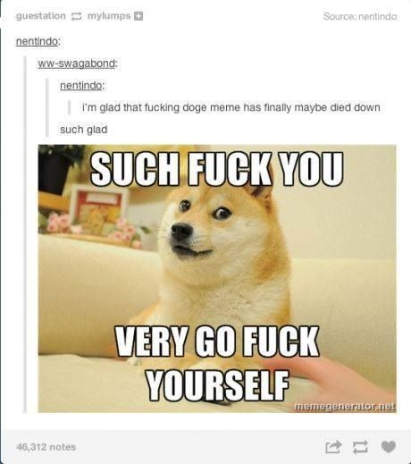 if you dont like the doge meme I probably hate you
